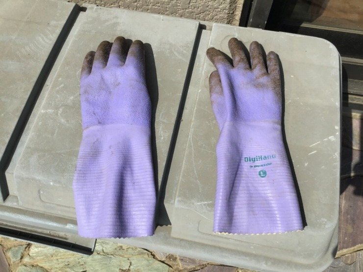室内用ゴム手袋はこちらです
